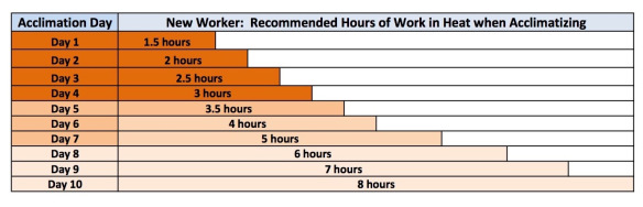 New worker chart for acclimatization