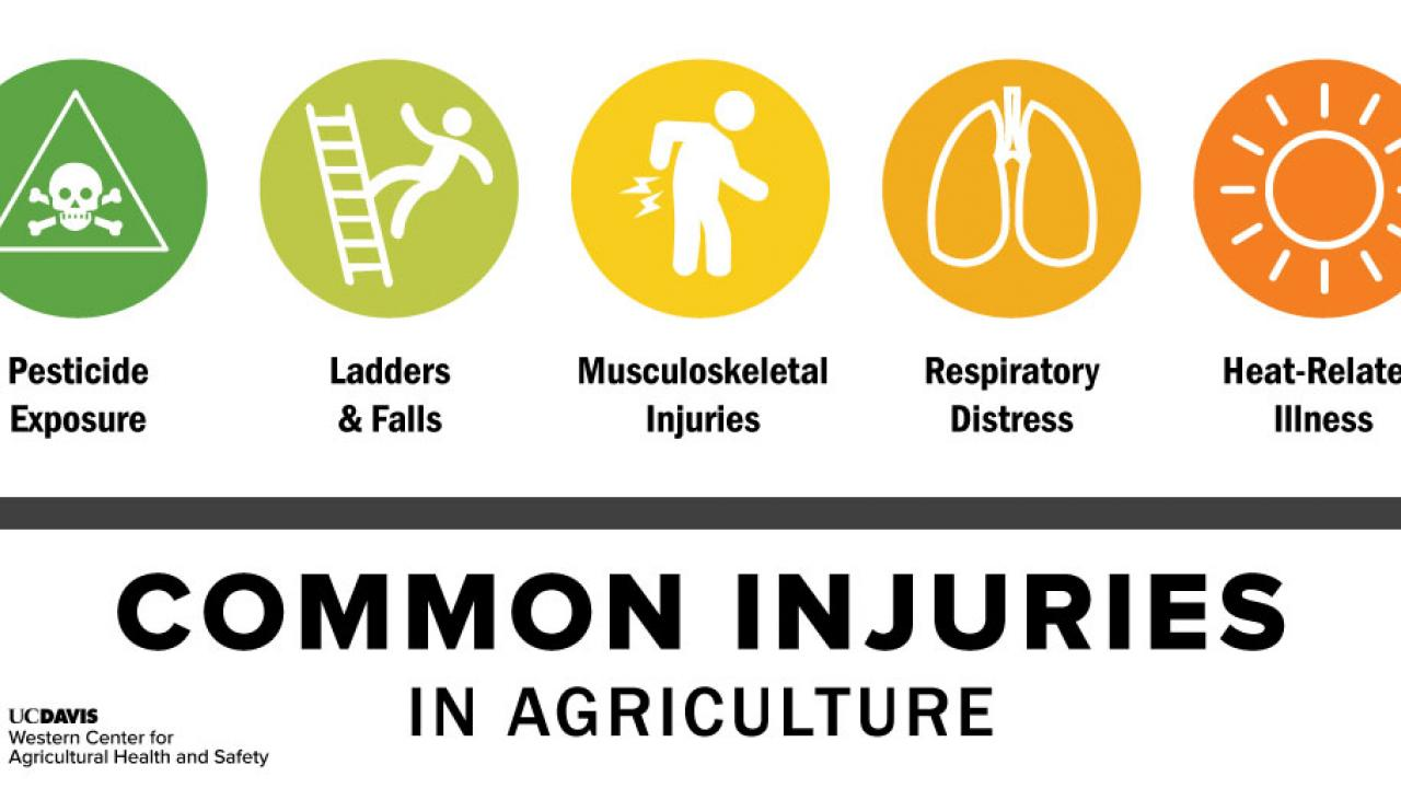 Common Injuries in Agriculture