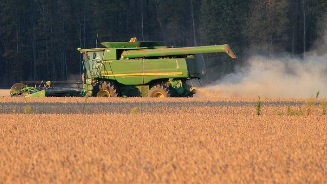 Harvest dust from field