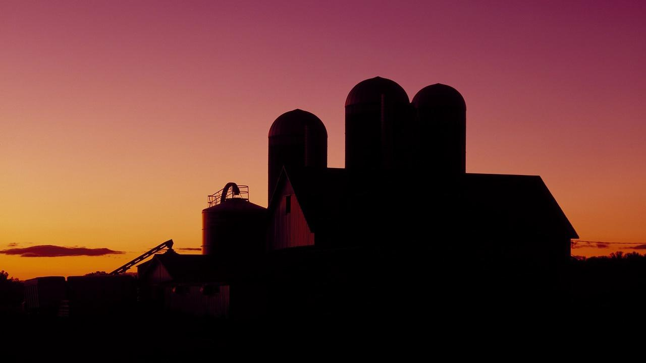 Dairy barn silhouette and sunrise