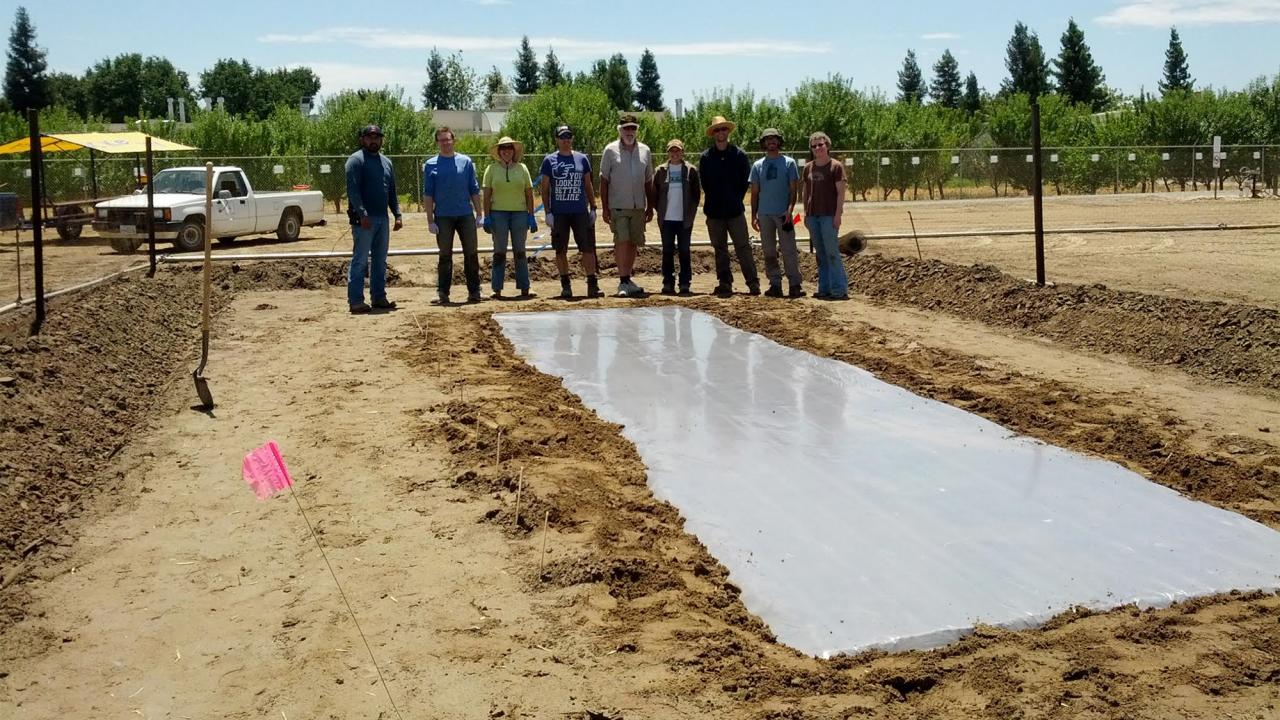 Biosolarization team in the field