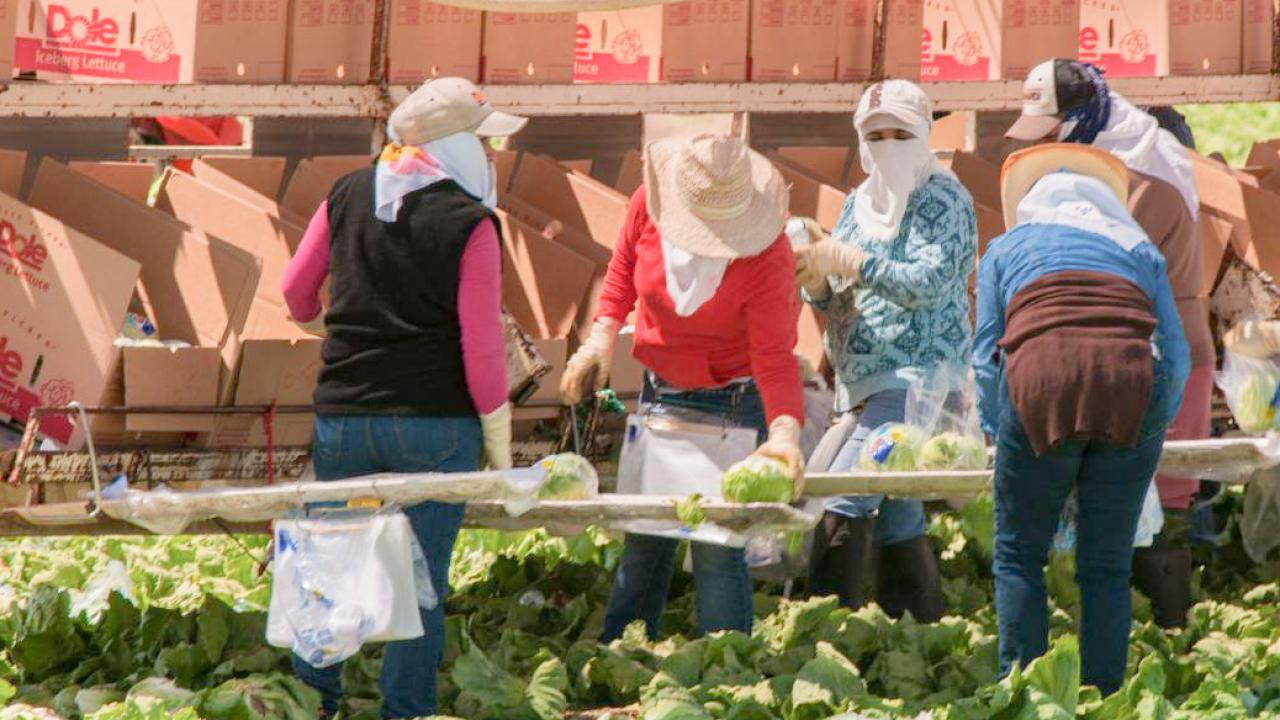 2018 Farmworker Women's Health, Safety, Employment, Education