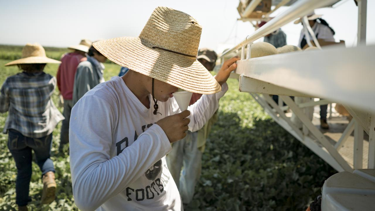 Farmworker rests in the shade and drinks water