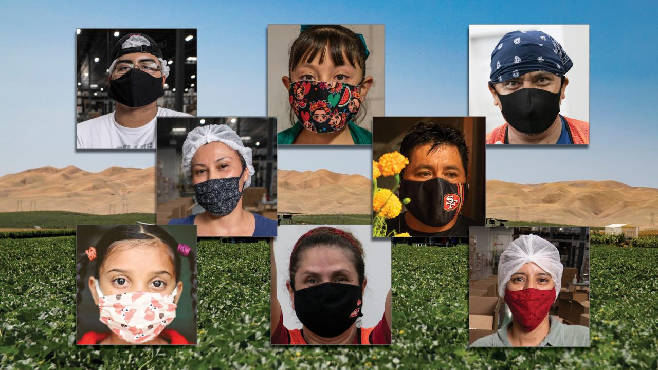 Farmworkers wearing cloth face coverings