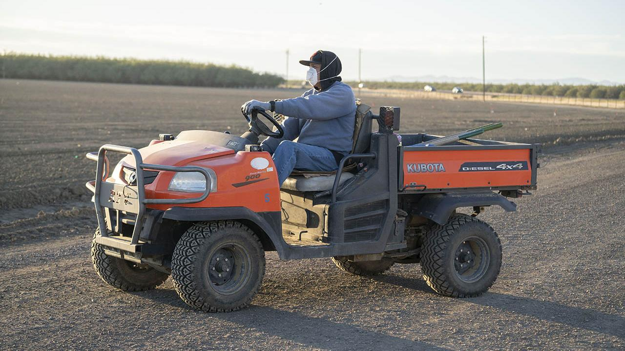 A farmworker wearing a mask drives a farm vehicle