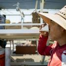Agricultural Worker Drinks Water in the Field