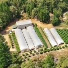 Aerial view of a cannabis operation