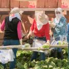 Female Farmworkers