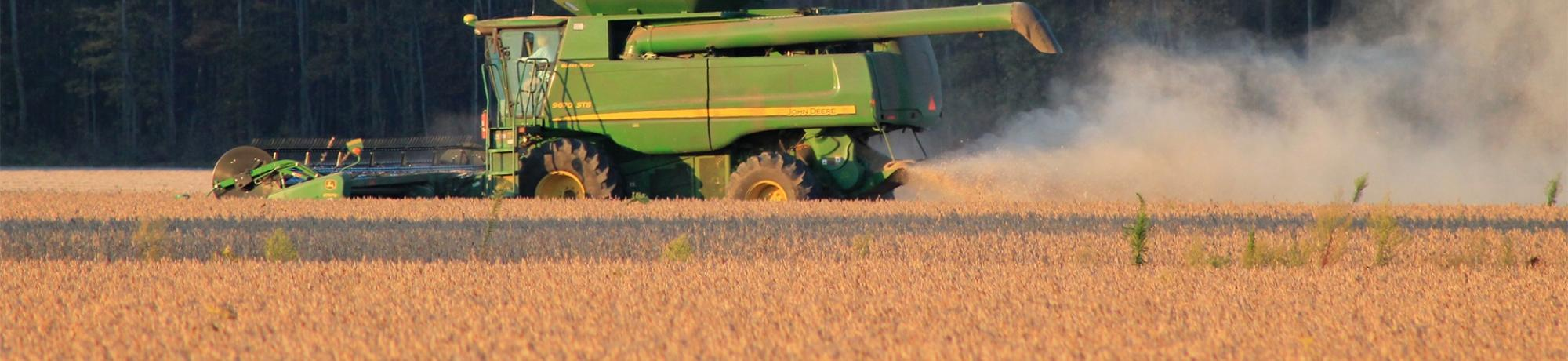 Harvesting soybeans in field with large agriculture machine